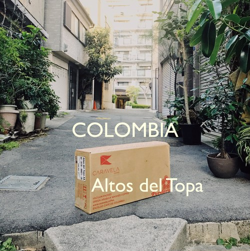 COLOMBIA -中深煎- 100g