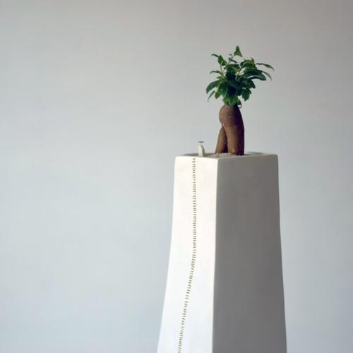 たくさん植物を枯らしてしまった人の器(楽園)