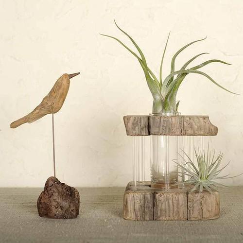 流木の花器-3