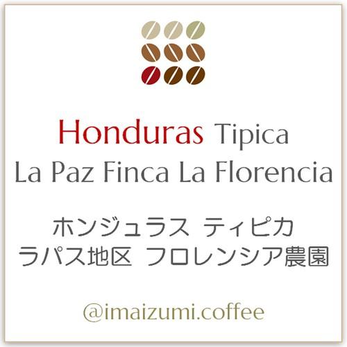 【送料込】ホンジュラス ティピカ ラパス地区 フロレンシア農園 - Honduras Tipica La Paz Finca La Florencia - 300g(100g×3)