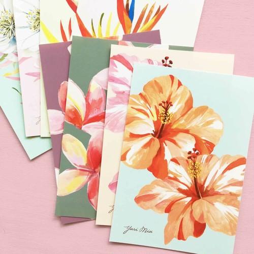 Tropical Flowers|花々のポストカード・8枚セット(ハイビスカス、プルメリア、月下美人 etc)
