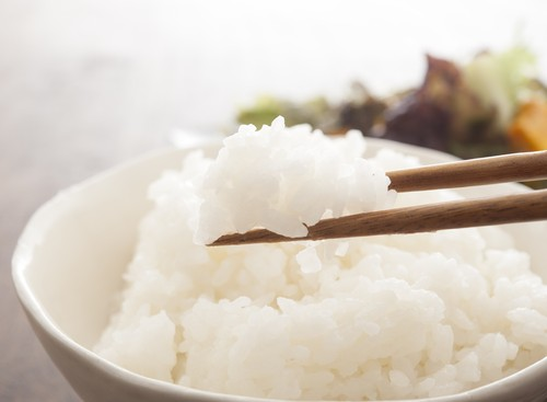 減農薬栽培米「滋賀県産 棚田米 きぬひかり」精米30kg