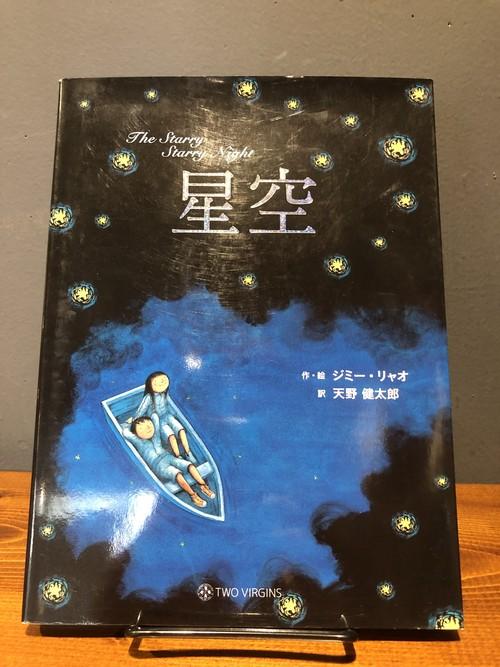 星空 starry starry night