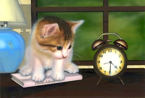 【印刷物】ポストカード:ねこと時計