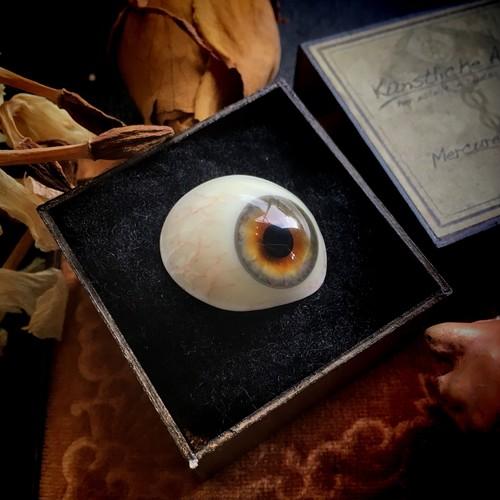 鼈甲色の義眼