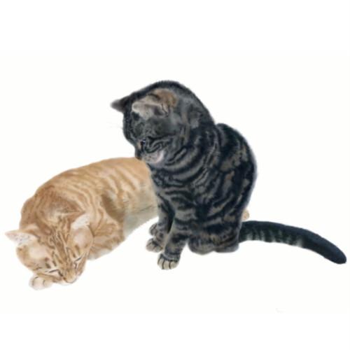 絵画 絵 ピクチャー 縁起画 モダン シェアハウス アートパネル アート art 14cm×14cm 一人暮らし 送料無料 インテリア 雑貨 壁掛け 置物 おしゃれ ネコ ねこ 猫 動物 アニマル キャット  デジタルアート ロココロ 画家 : rune 作品 : おやすみ