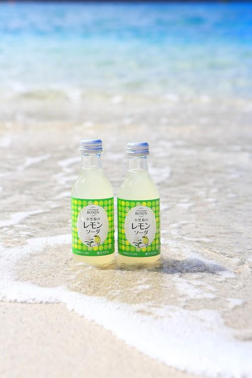 宝石グリーンレモンソーダ 酸っぱい!搾ったままのレモンの美味しさ6本入小笠原レモン100%