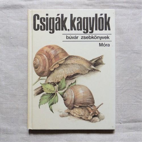 #エア蚤の市 ハンガリーのポケット図鑑④