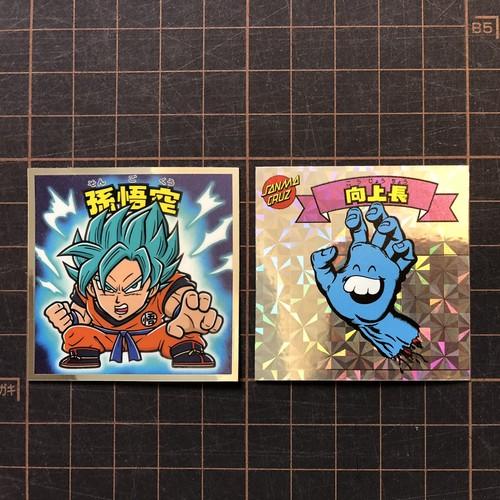 SANMA CRUZ sticker