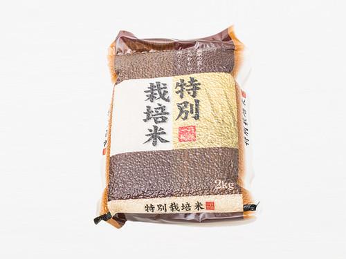 特別栽培米 さきひかり(真空パック)2kg