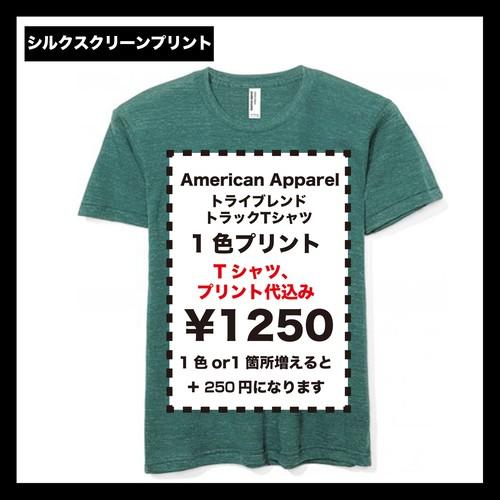 American Apparel アメリカンアパレル トライブレンドトラックTシャツ (品番TR401W)