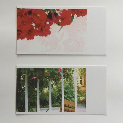 イリスの庭 <夏> 新作ポストカード2枚セット