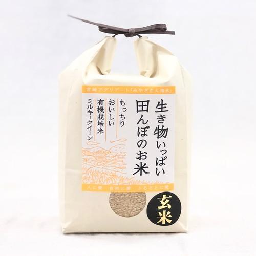 玄米2kg  有機ミルキークイーン