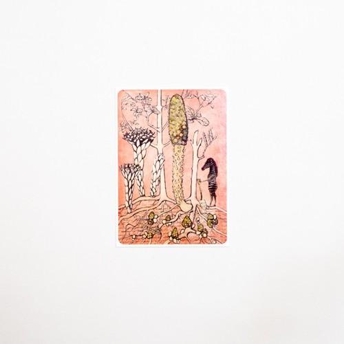 a key to the secret garden postcard