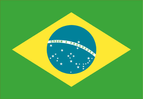 ブラジル (ブルボン アマレロ No2. カルモデミナス )200g
