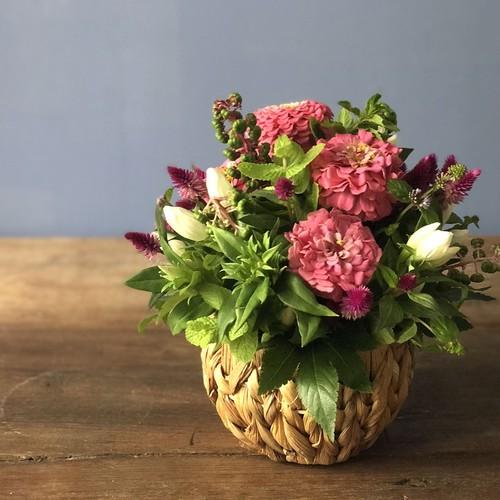 季節の花カゴ S(編み編みのカゴ)