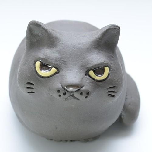 コウバコ猫 クロ