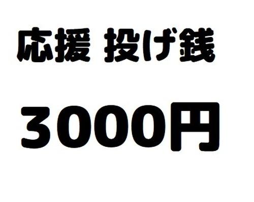 応援投げ銭3000円【大曽根クルール個人への支援】