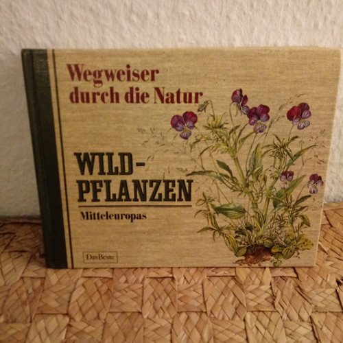 ドイツ ヴィンテージ図鑑 野の植物 Wild-Pflanzen (C)