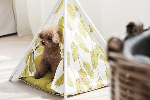 TEEPEE TENT Palm Olive [S_size]ティピーテントHUTS AND BAY