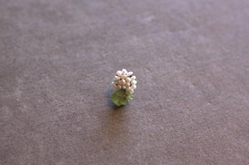 fiori.   星のかけら ペリドット
