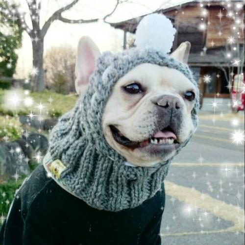 来シーズンまでお待ちください☆大人気☆ポンポン帽子付きスヌード