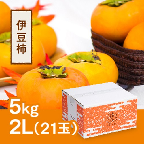 伊豆柿 2L 21玉(5kg)