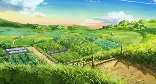 のどかな畑