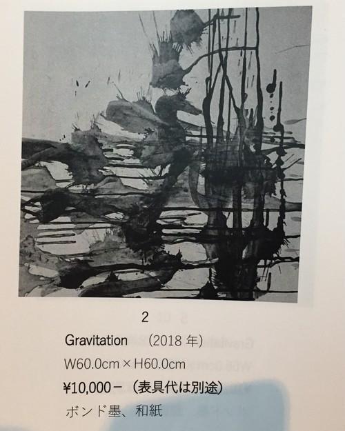 13Haru Yamaguchi作品「Gravitation」カタログ2