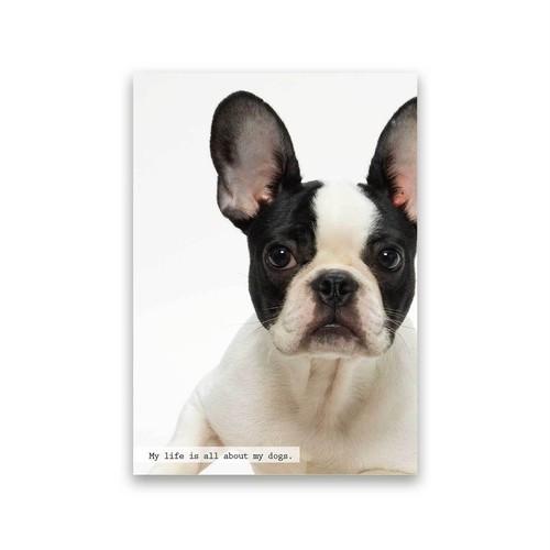 好きな写真でつくるフォトポスター「1shot dog」(縦)