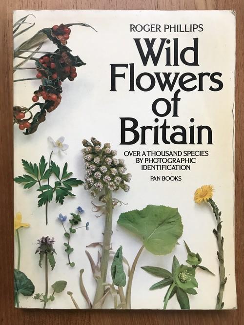 wild flowers of britain
