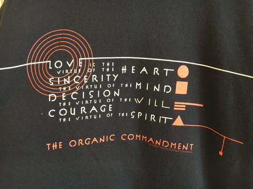 """Frank Lloyd Wright"" printed t-shirts"