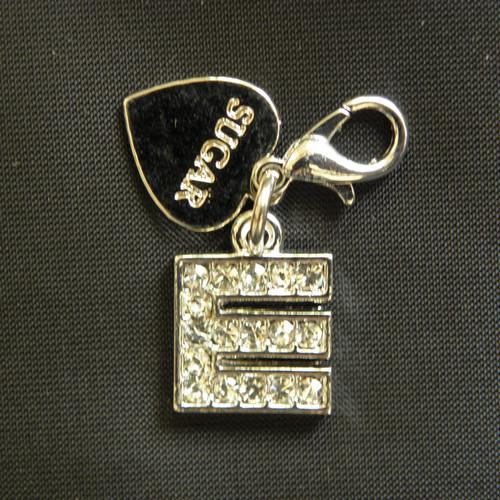 Silver charm E