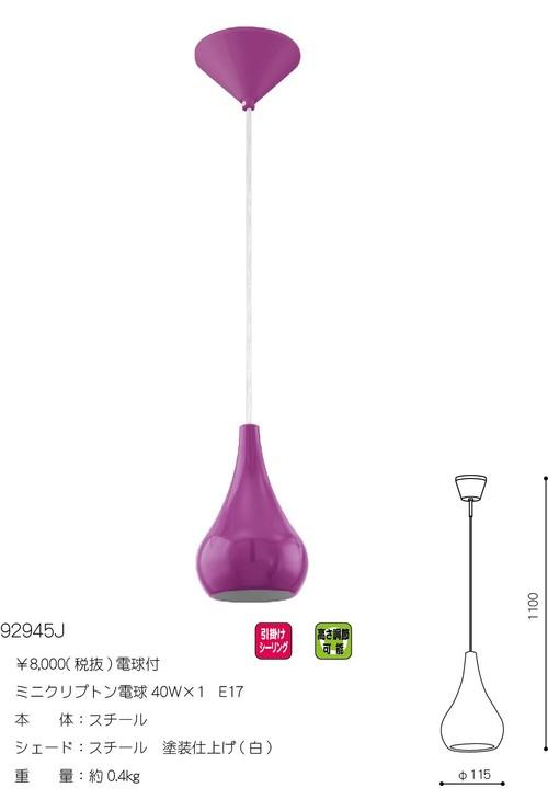NIBBIA(ニビア)92945J・電球付