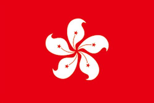 香港民政事務所/Home Affairs Department提供の声明書/Declarationの様式部分日本語訳