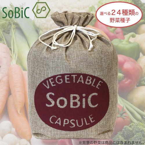 【おまけ種子が選べる24種類】野菜カプセル[SoBiC(ソビック)オーガニックプランター専用]
