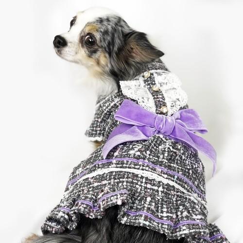 【犬服・ドッグウェア】リボン付きファンシーツイードドレス