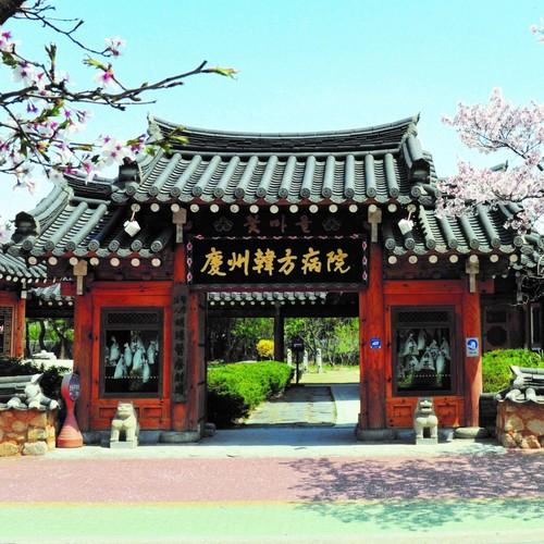 慶州韓方病院1日体験