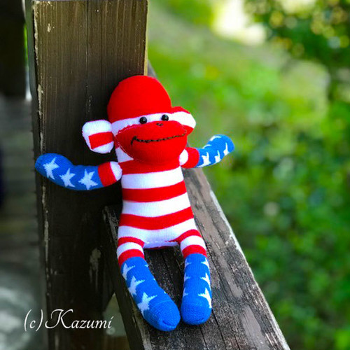 【展示】ソックモンキー 男の子(アメリカン) #183