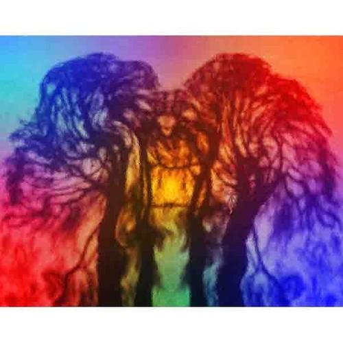 神秘の森・41(生命の樹02)