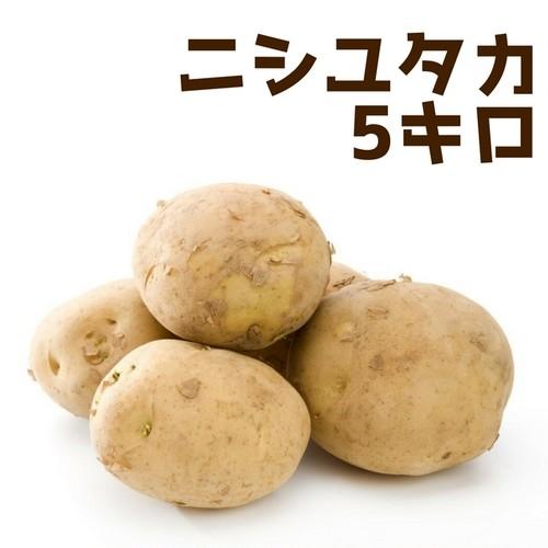ニシユタカ5キロ