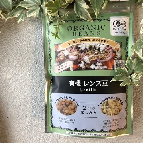 有機レンズ豆〜オーガニックの種から育てる発芽豆〜