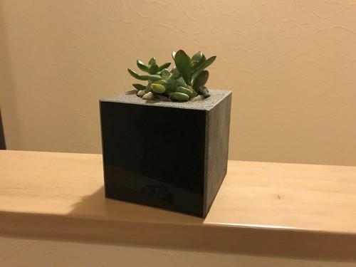 黒御影石で作る多肉植物用プランター