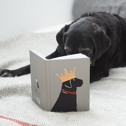 Sweet William 【Labrador】Notebook