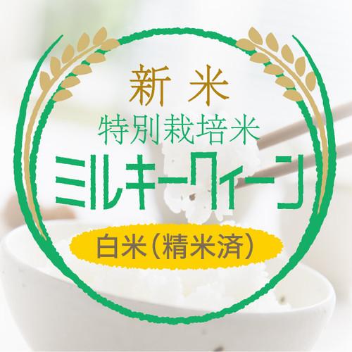 新米・特別栽培米 ミルキークイーン 白米27kg〈1週間以内で発送〉