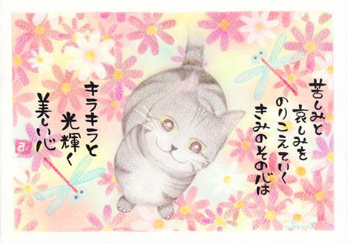 ポストカード No.10 秋茜