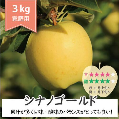 甘すぎない「シナノゴールド」  家庭用りんご 3Kg