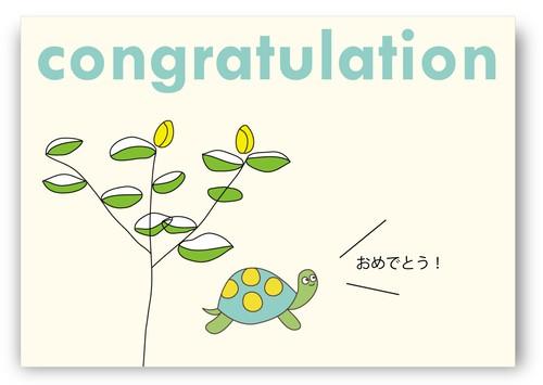 009 congrats_turtle