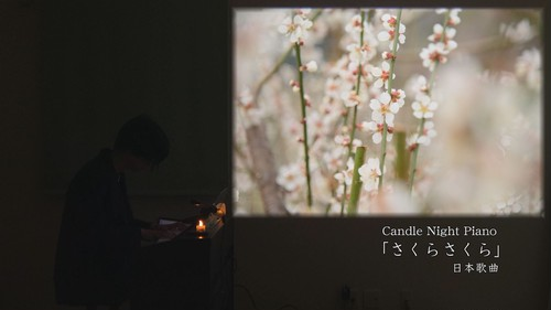 Candle Night Piano「さくらさくら」