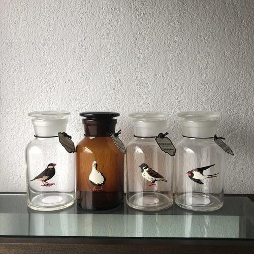 BIRD DESIGN SUPPLIES/メディシンボトル<再入荷>